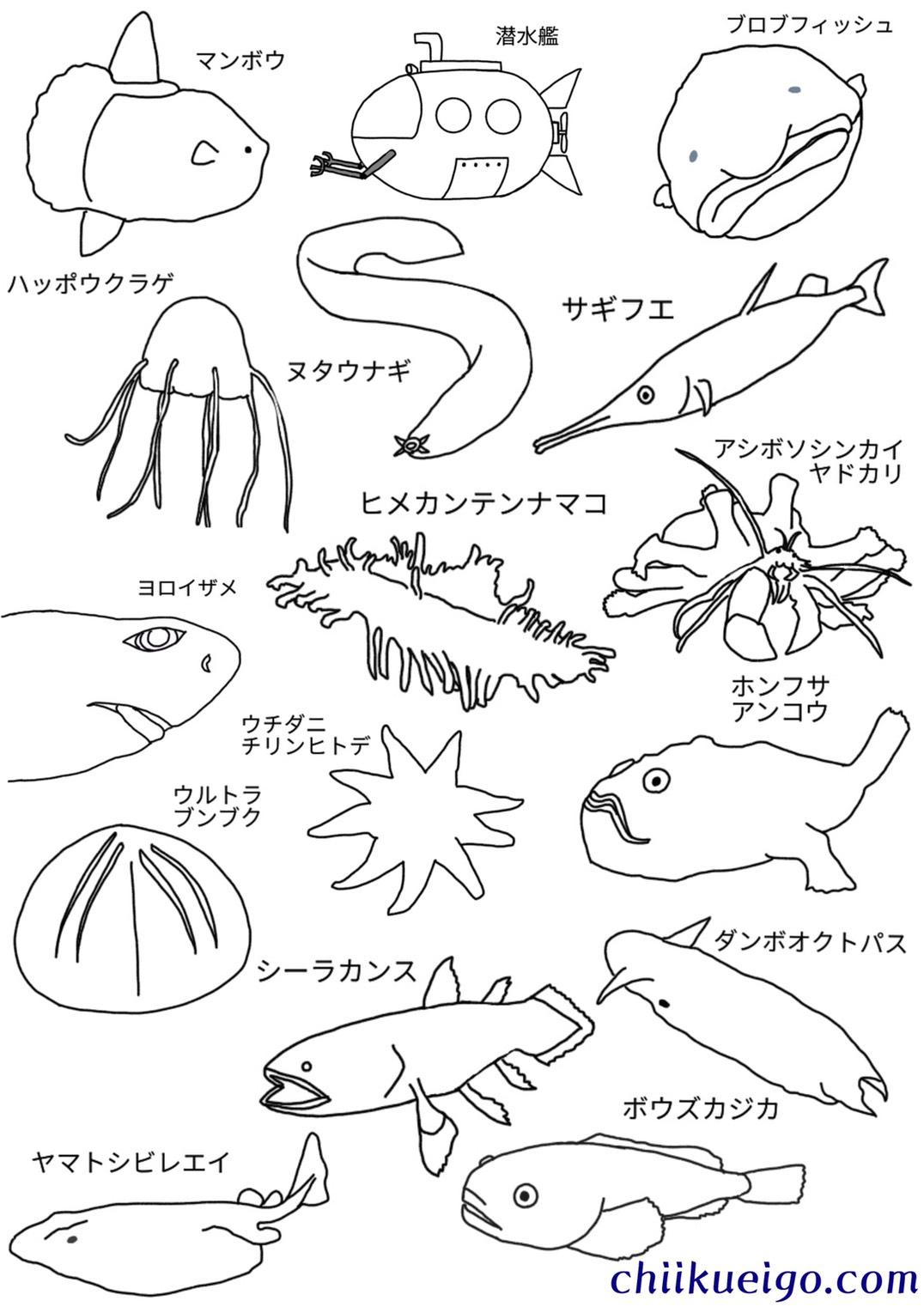 深海生物塗り絵2