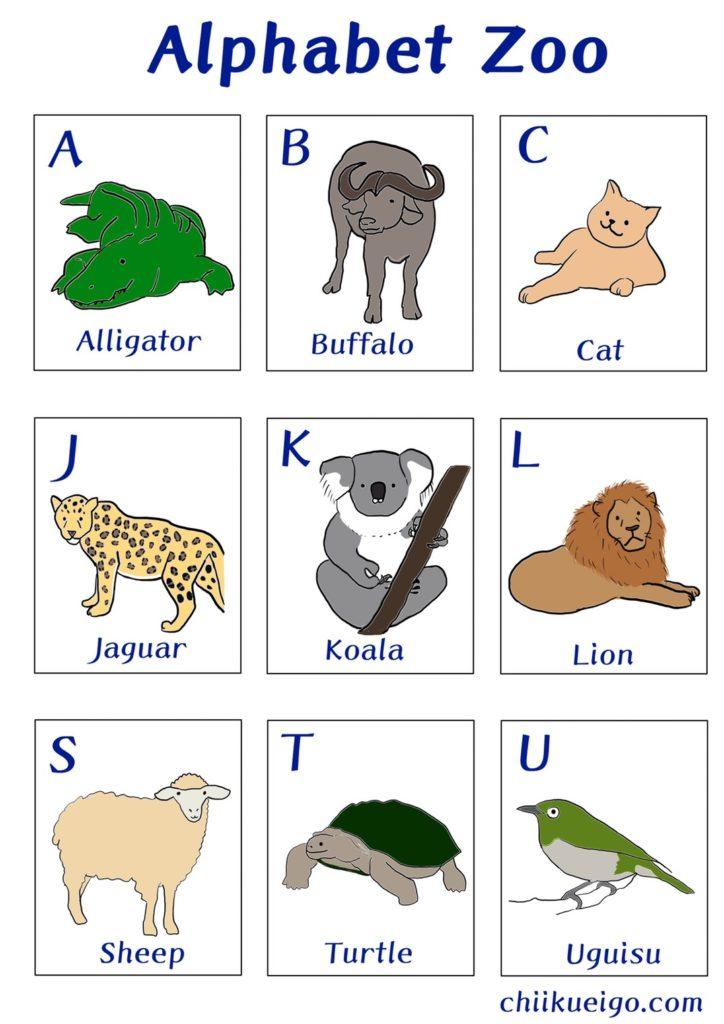 Alphabet animal