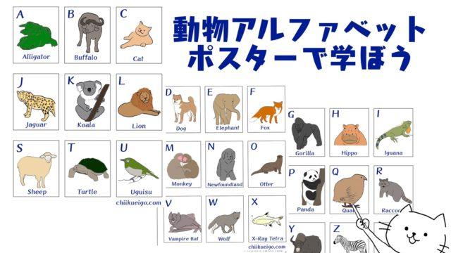 英語アルファベット動物ポスター